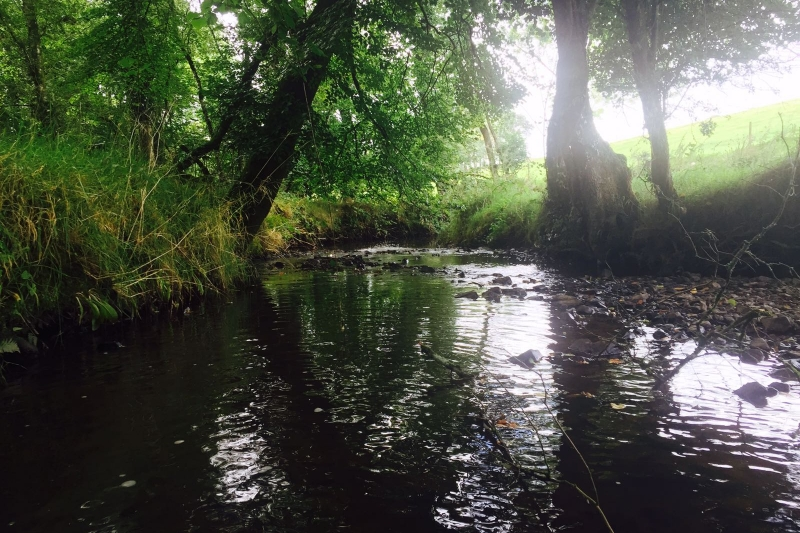 the river Dalch on the farm