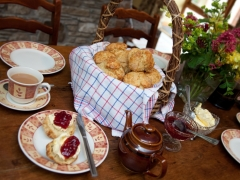 freshly baked Devon cream tea