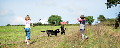 Pet Friendly Holidays in Devon