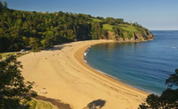 Holiday Cottages and B&Bs in South Devon